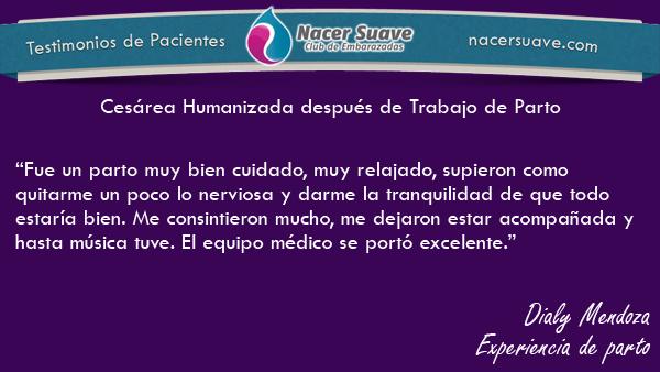 Testominio 6 - Dialy Mendoza